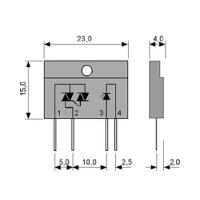 Elektronisches Lastrelais S 202 T 01